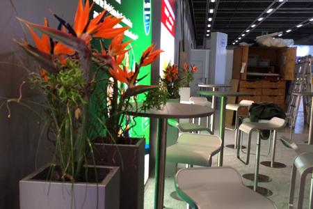 Firmenservice Blumen Boutique Wingen Wiesbaden